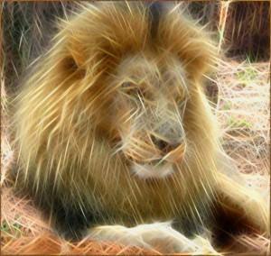 Rodilius Lion